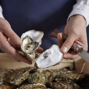 Dao tách hàu Opinel No.9 Oysters and Shellfish - lifestyle